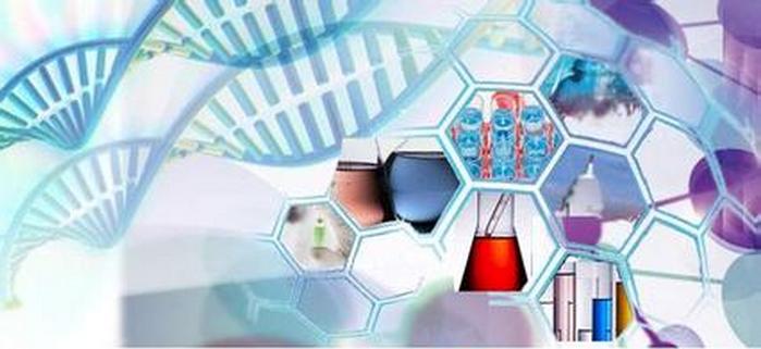 生物合成的医药中间体工艺开发、中试生产外包服务