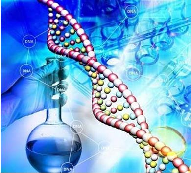 生物制品、制药研发