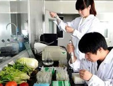 食品包装生产线设计及技术服务