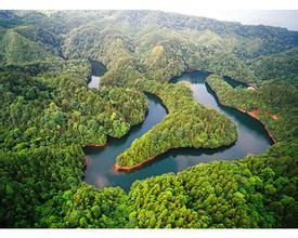 共同发展我国森林旅游与健康产业