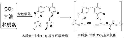 利用造纸产业副产物绿色合成聚氨酯高分子材料