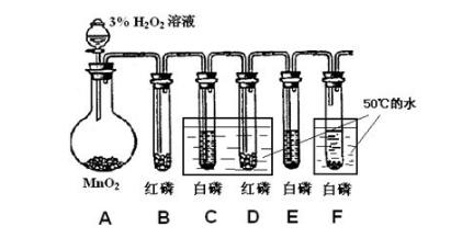 乙酸乙酯的水解(70~80℃),蔗糖的水解(70~80℃),硝酸钾溶解度的测定