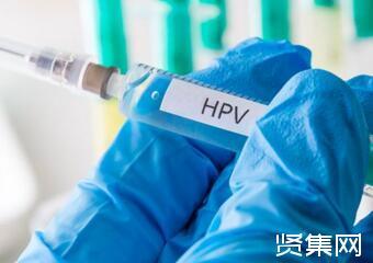 HPV病毒感染并不可怕,可通过提升免疫力等方式清除体内病毒