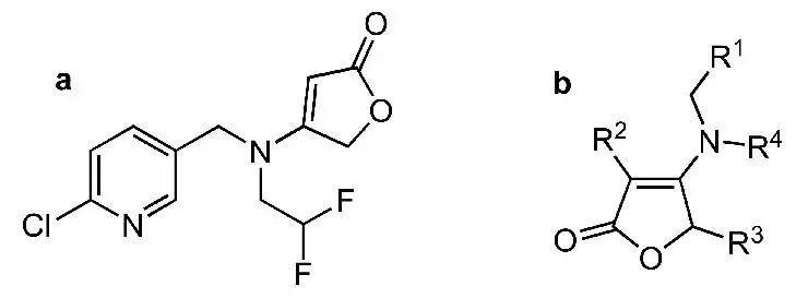 图1氟吡呋喃酮的化学结构式(a)和丁烯酸内酯类化合物的活性骨架(b)