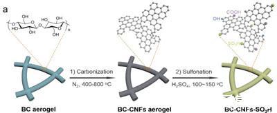 中科大俞书宏研究团队制备出新型纳米纤维固体酸催化剂材料