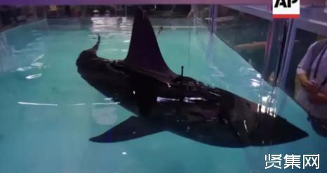 一种仿蝠鲼潜水辅助系统的设计方案