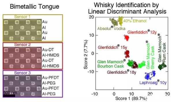苏格兰格拉斯哥大学发明人造舌头来鉴别威士忌真伪