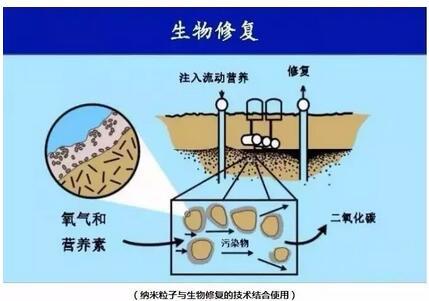 矿山重金属土壤污染修复技术