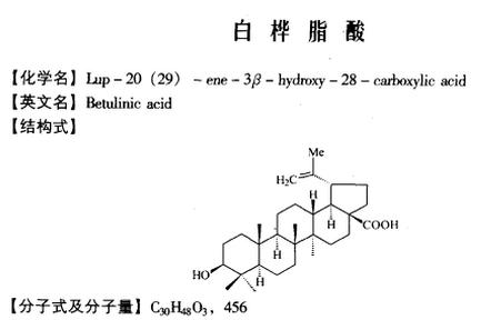 抗癌原料药白桦脂酸