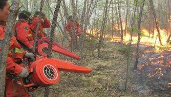 嘎拉河林场的森林防火办法