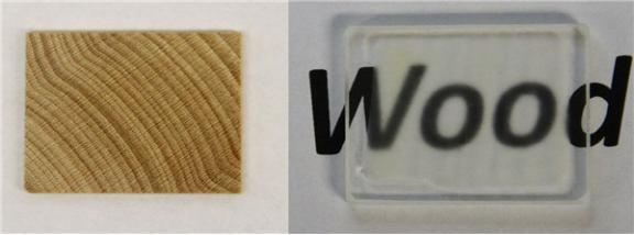 美国马里兰大学已成功研制木质玻璃