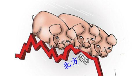 国内猪价整体下滑 短期内将延续下滑走势