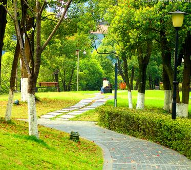 乌鲁木齐市高新区的园林绿化情况