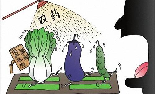 不同的农产品加工技术去除农药残留的效果