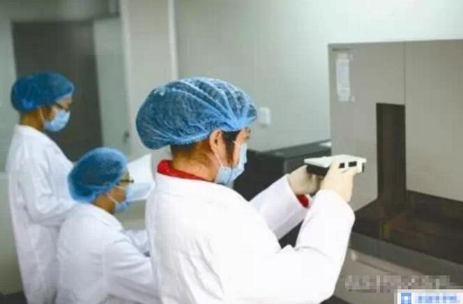 微生物菌种的扩大培养及污染的检测和判别