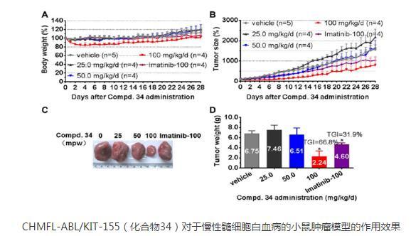 靶向BCR-ABL/c-KIT的II型激酶抑制剂CHMFL-ABL/KIT-155