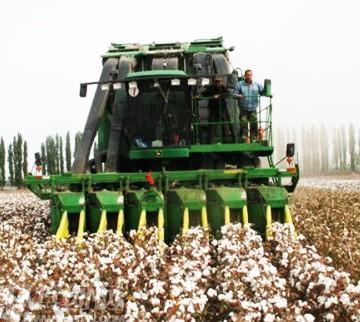 新疆机采棉和国外机采棉有哪些区别