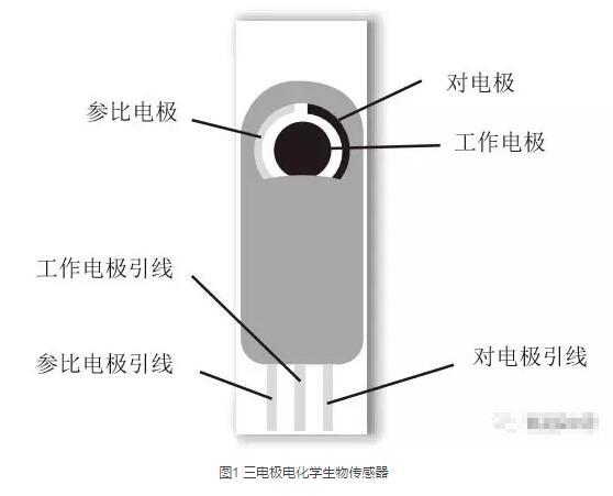 丝网印刷生物传感器技术