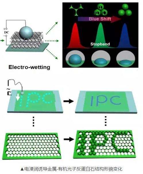 超浸润性光子晶体的制备及应用方面取得系列重要进展