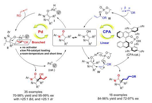 吡唑酮类化合物的手性衍生化的合成途径