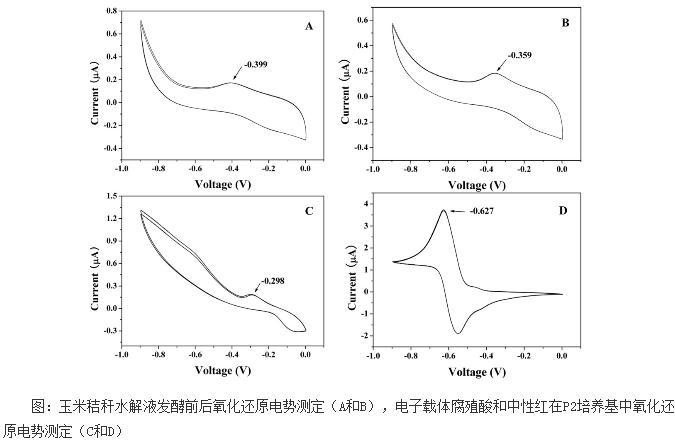 玉米秸秆水解液对产丁醇梭菌影响的深入研究