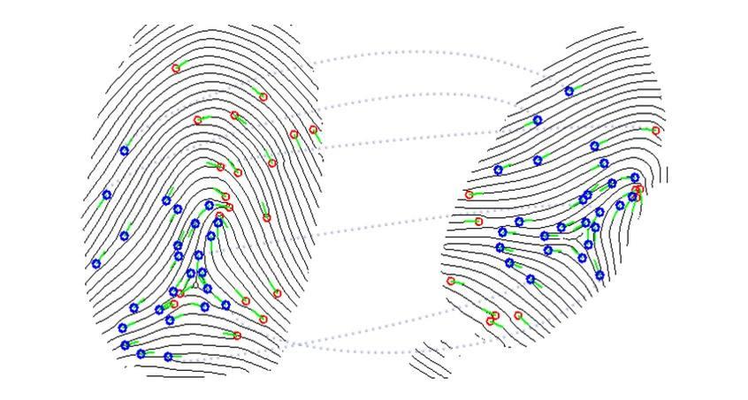指纹图像的匹配是怎样的