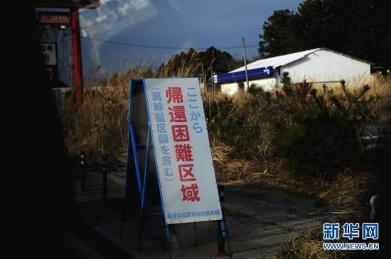 探访福岛核泄漏区:劫后空城 野草疯长