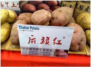 品牌培育是马铃薯主食化加工业核心竞争力提升的关键