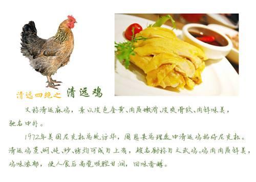 清远鸡系列烹饪团体标准的制定