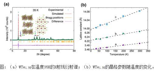 发现II类Weyl半金属中的各向异性ABJ反常效应的证据