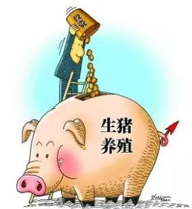 哪几方面会影响到养猪的利润?