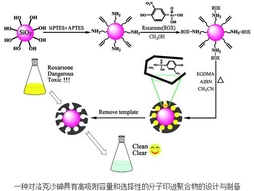 洛克沙砷具有高吸附容量和选择性的分子印迹聚合物
