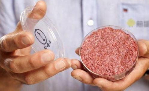 美国Memphis Meats公司培育出的人造鸡肉和鸭肉