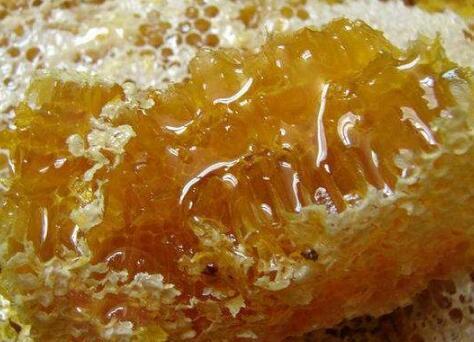 土蜂蜜的营养价值和安全隐患及选购攻略