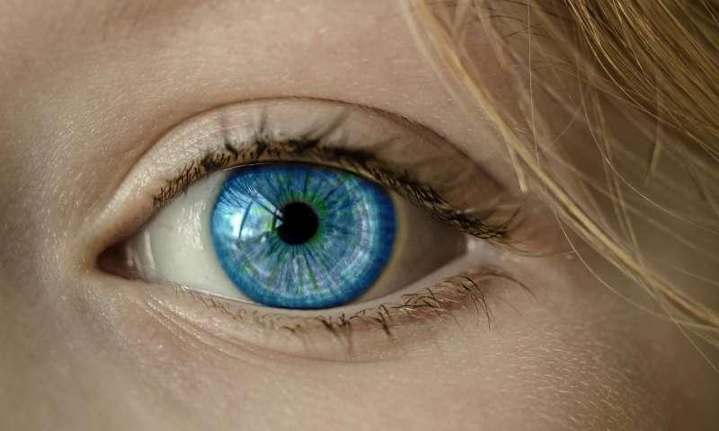 科学家发明治疗老年性黄斑变性的革命性滴眼剂