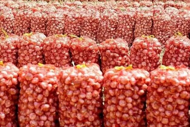 新蒜上市保鲜蒜降价主要原因是什么