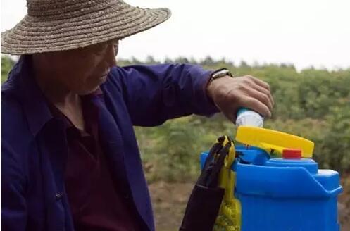 夏季防虫打药的时候注意哪些安全问题