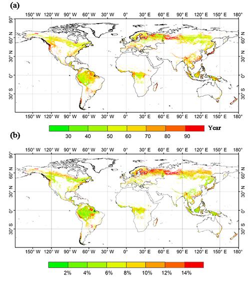 全球森林碳滞留时间的变化机制