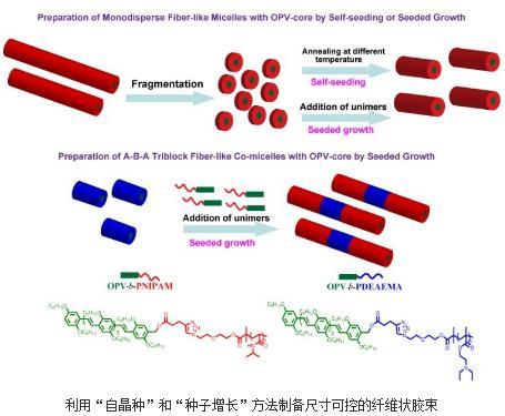 功能性纳米体系的精细构筑一系列研究成果