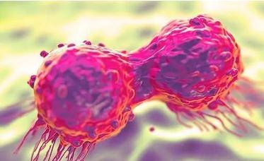 多四环素搭配维生素C的抗癌效果是常规临床药物的100倍?
