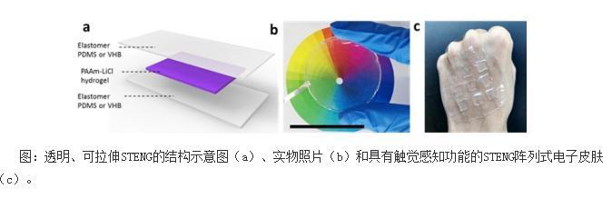 一种全新的仿皮肤式纳米摩擦发电机(STENG)