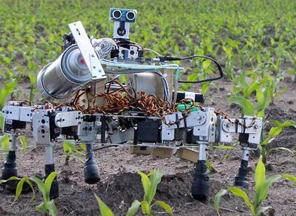 除草机器人新系统(以短激光脉冲照射除草)可替代除草剂?