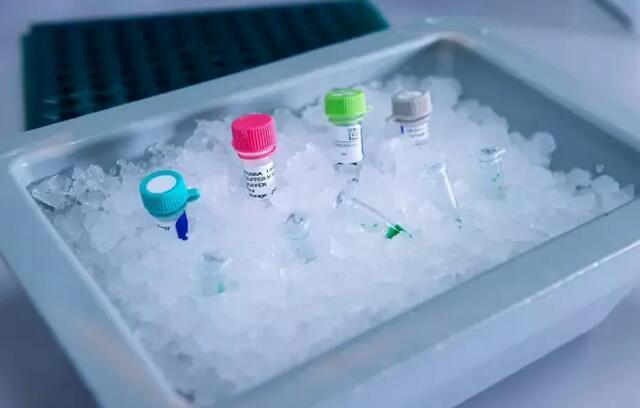 细胞冷冻保存的材料及方法