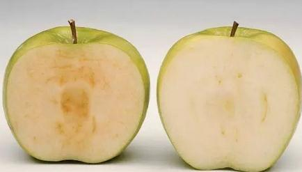鲜切果蔬褐变原因,控制酶促褐变的方法
