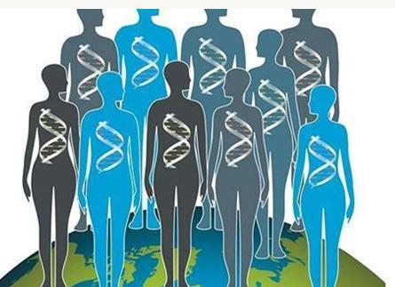 父亲吸毒会遗传胎儿吗?雄性大鼠实验结果毒品成瘾可能会遗传给后代