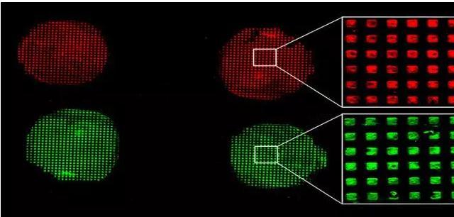 微流控生物测定器件:新的打印步骤改进了传统的微接触印刷技术