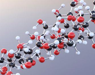 AMPK:机体感受葡萄糖水平并调节代谢模式的机制