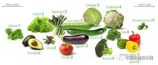 什么是低碳水化合物和低脂肪饮食?
