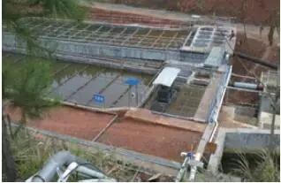 金属矿采选废水生物制剂协同氧化深度治理与回用技术