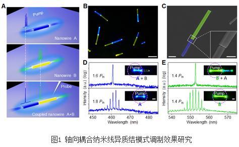 纳米光子学集成器件:首次实现了多增益区间的激光模式互选